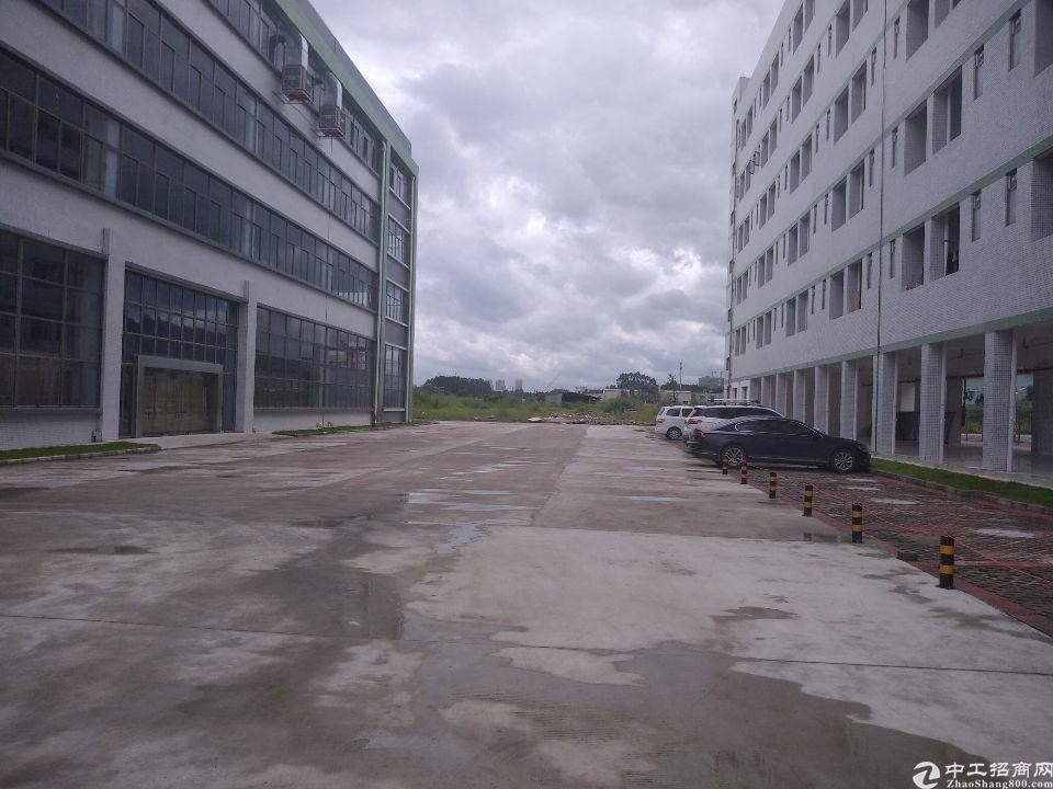白花标准厂房独院,一层4250平