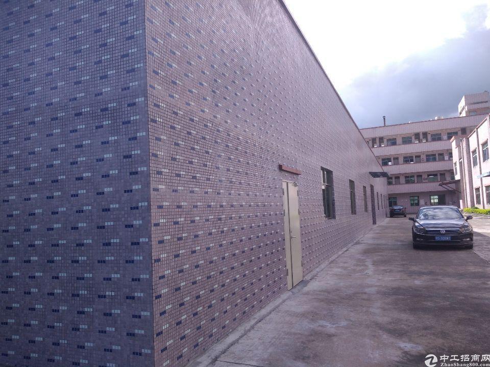 白花独门独院钢构厂房一千平