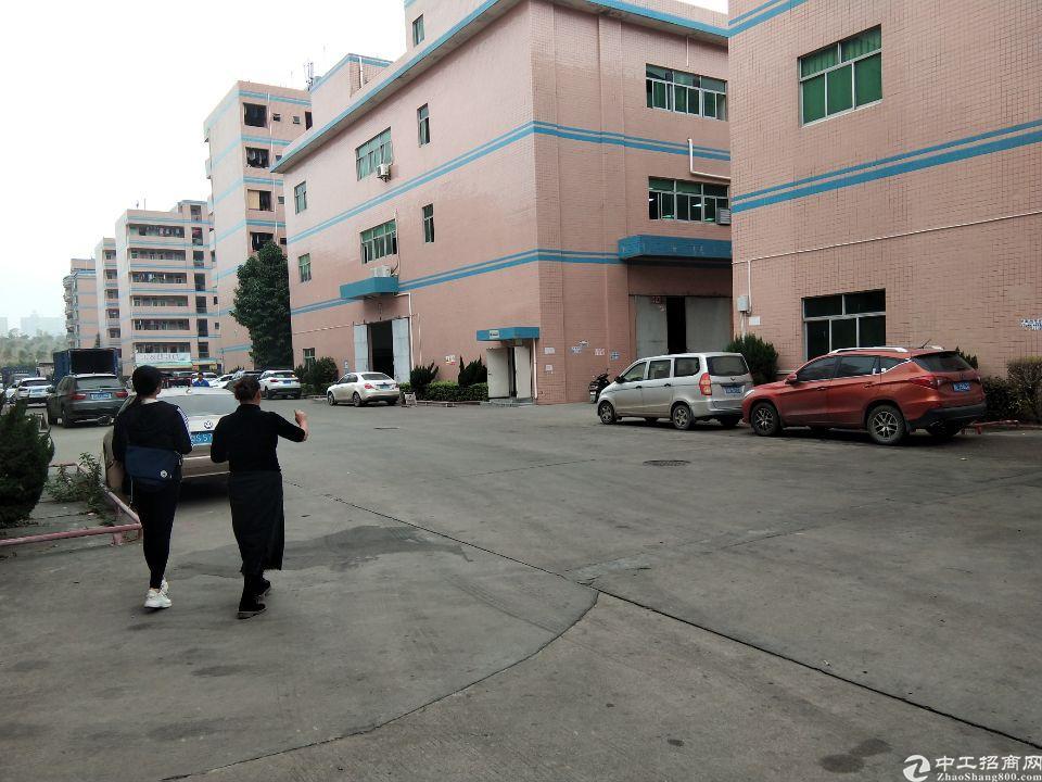 惠阳大亚湾标准一楼400平厂房出租,红本在手,可办环评