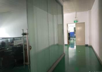 沙井镇共和现成无尘车间厂房1400平方出租图片4