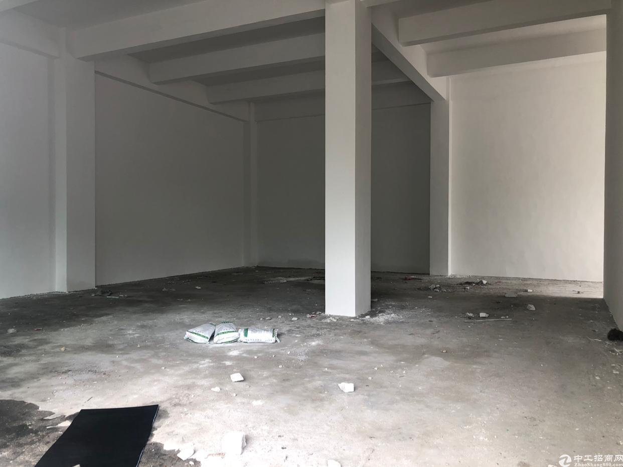 坪山大工业区新出仓库320平方一楼6米高出租
