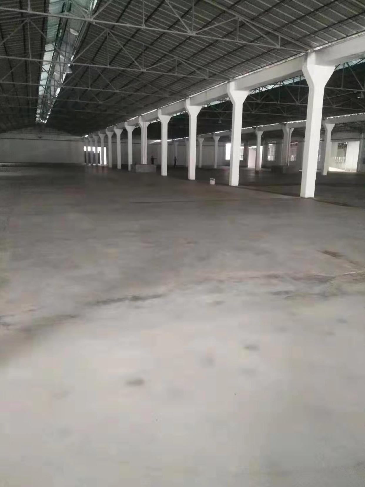 黄埔区东区新出钢结构厂房20000平,大小都可分,空地大-图2