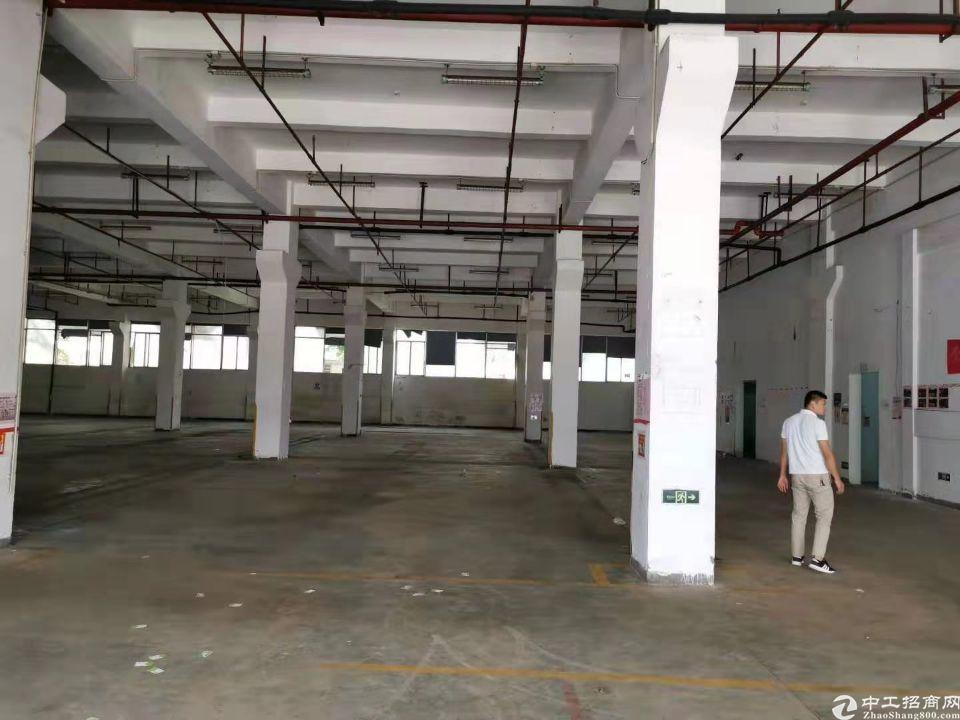 坪山带卸货平台仓库,7000平米专业仓库