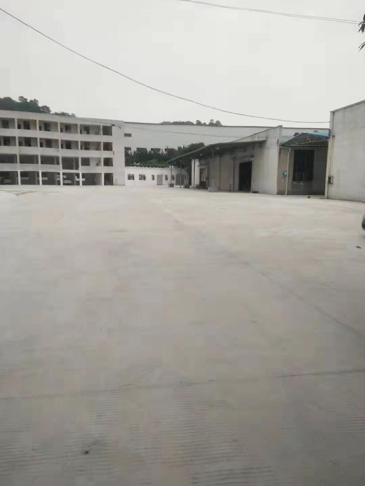 黄埔区东区新出钢结构厂房20000平,大小都可分,空地大