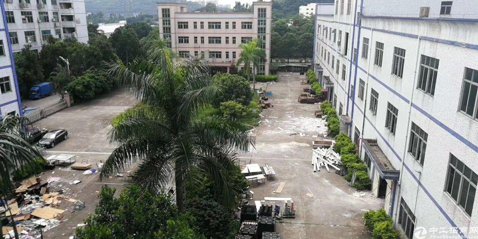 东莞市凤岗镇花园式厂房总面积23000平合同签10年