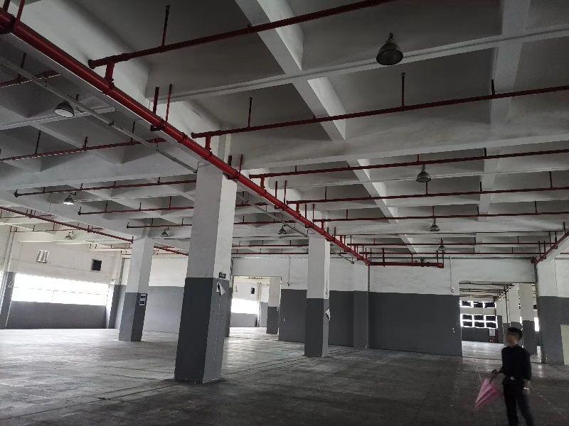中山项目坡道仓,车可以开到二楼仓库,一共6.6万平方-图4