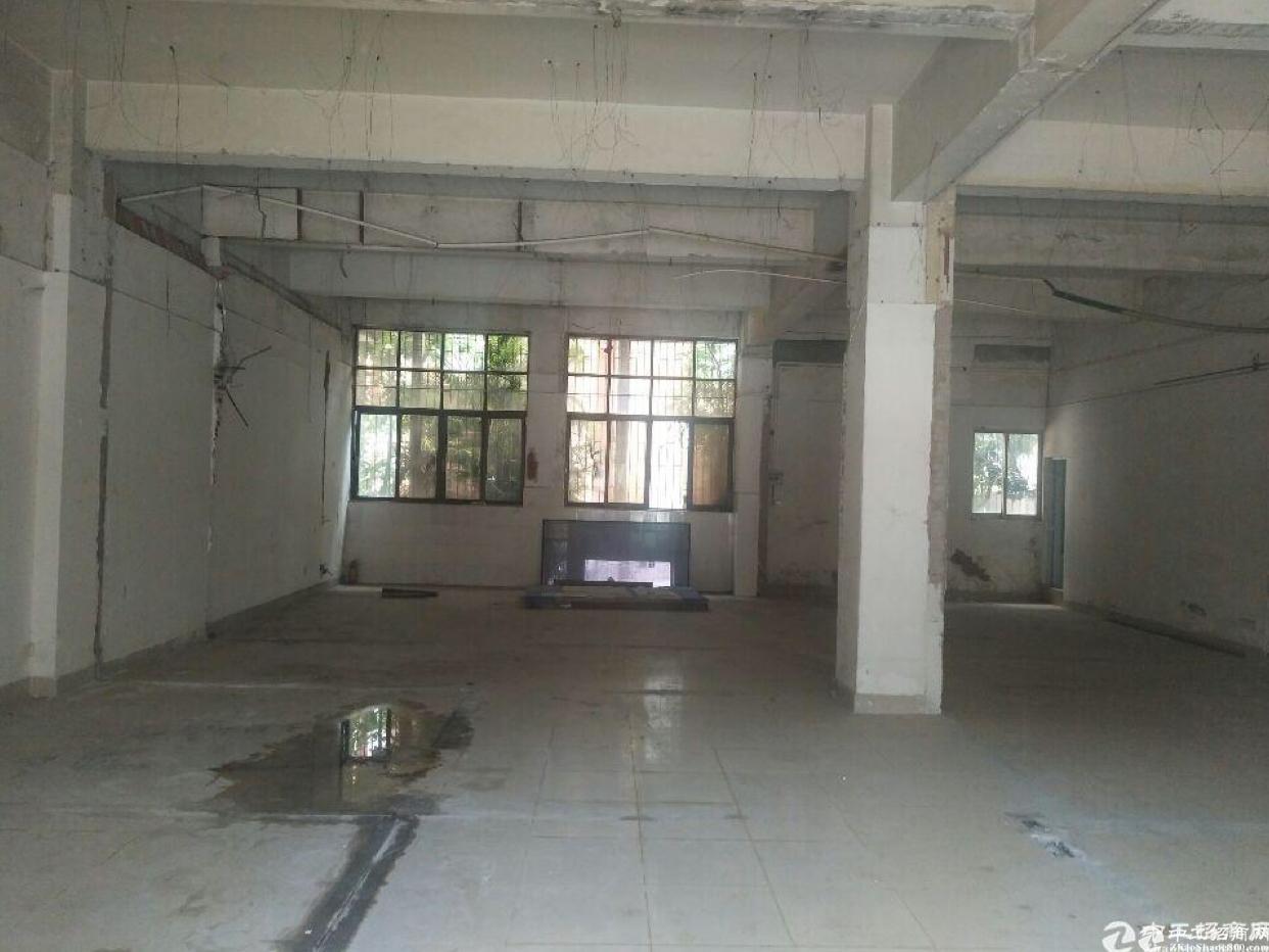 天河珠吉一楼220平仓库出租