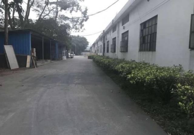 厚街镇厚街村独院钢构厂房仓库出租,形象好有办公室宿舍