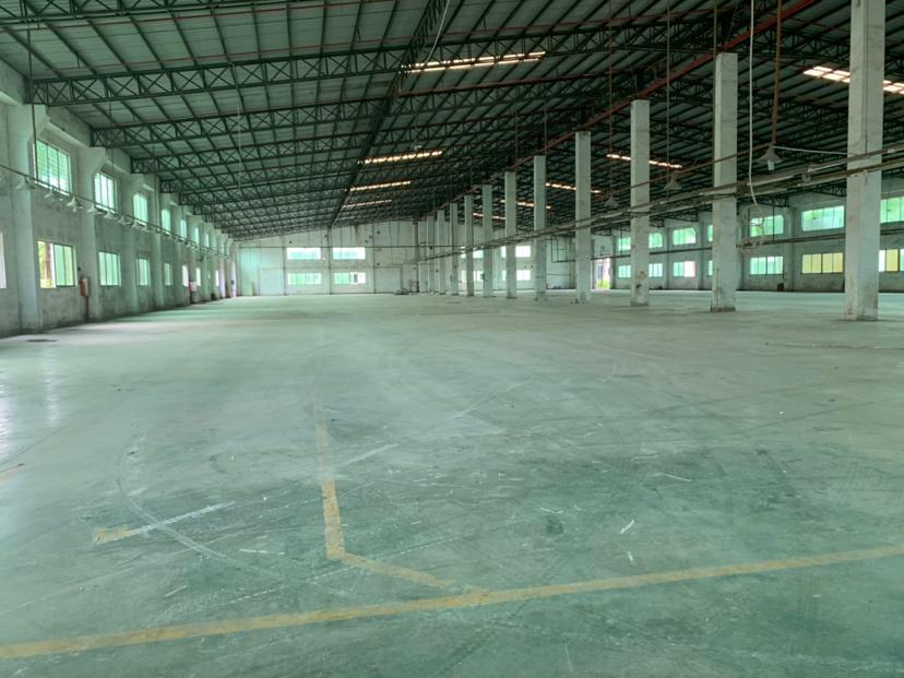 大亚湾西区花园式独院钢构厂房6万平带喷淋空地大