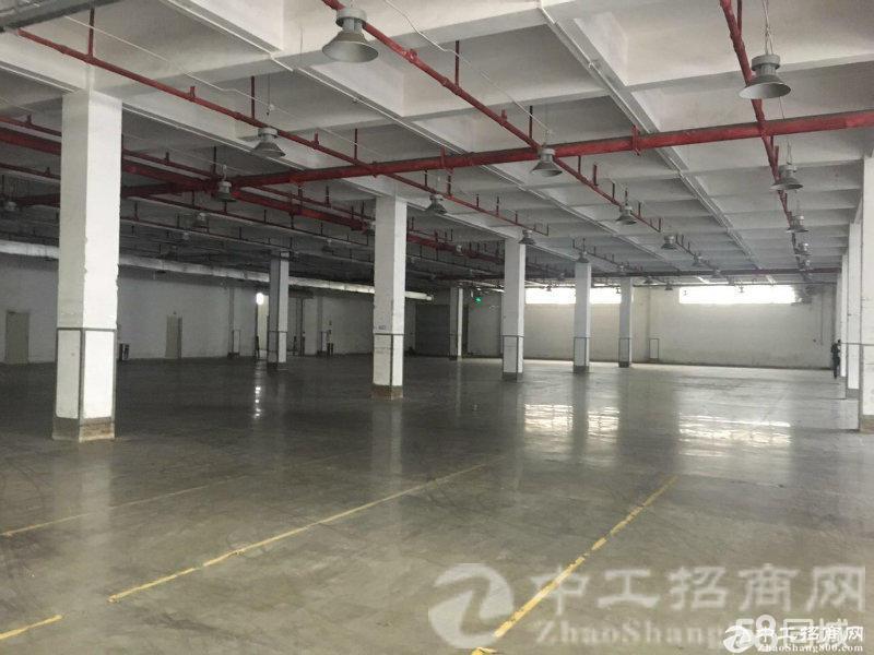厚街镇厚街村整层带精装修1230平可做生产加工可环评厂房仓库