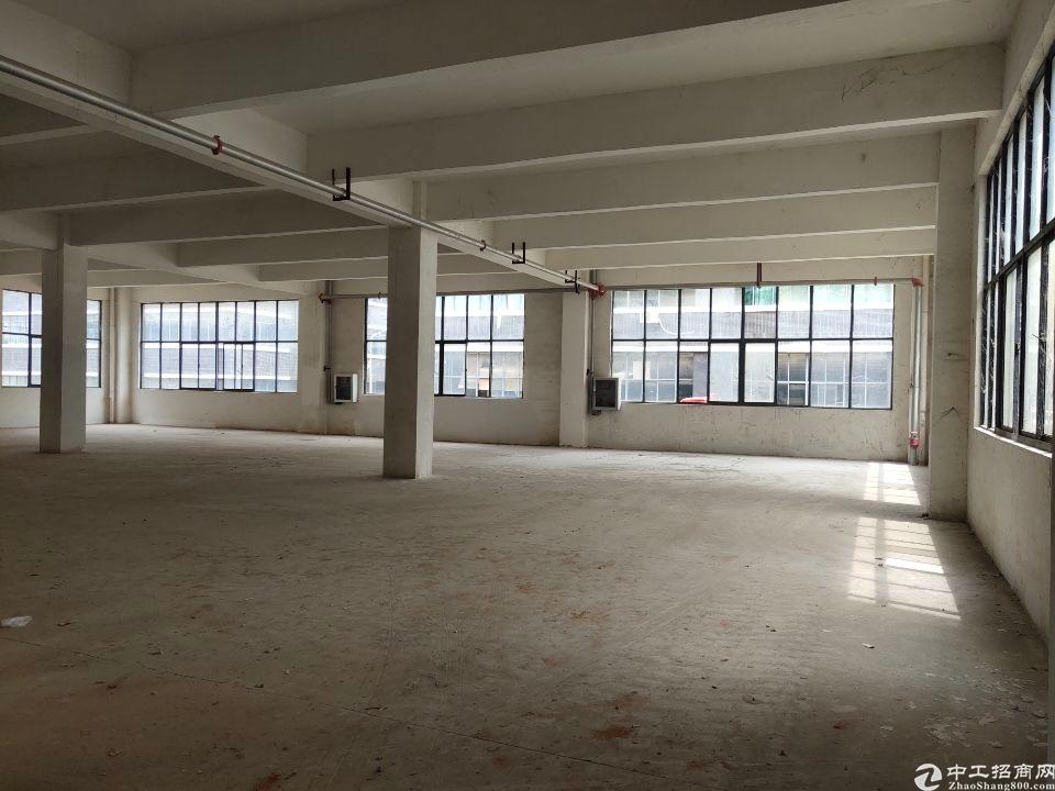 新洲阳逻厂房出售,易招工,近地铁