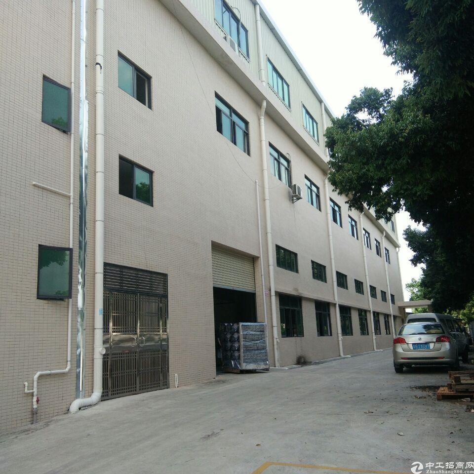 塘厦镇石马原房东二楼200平方带办公室装修适合做小加工仓库