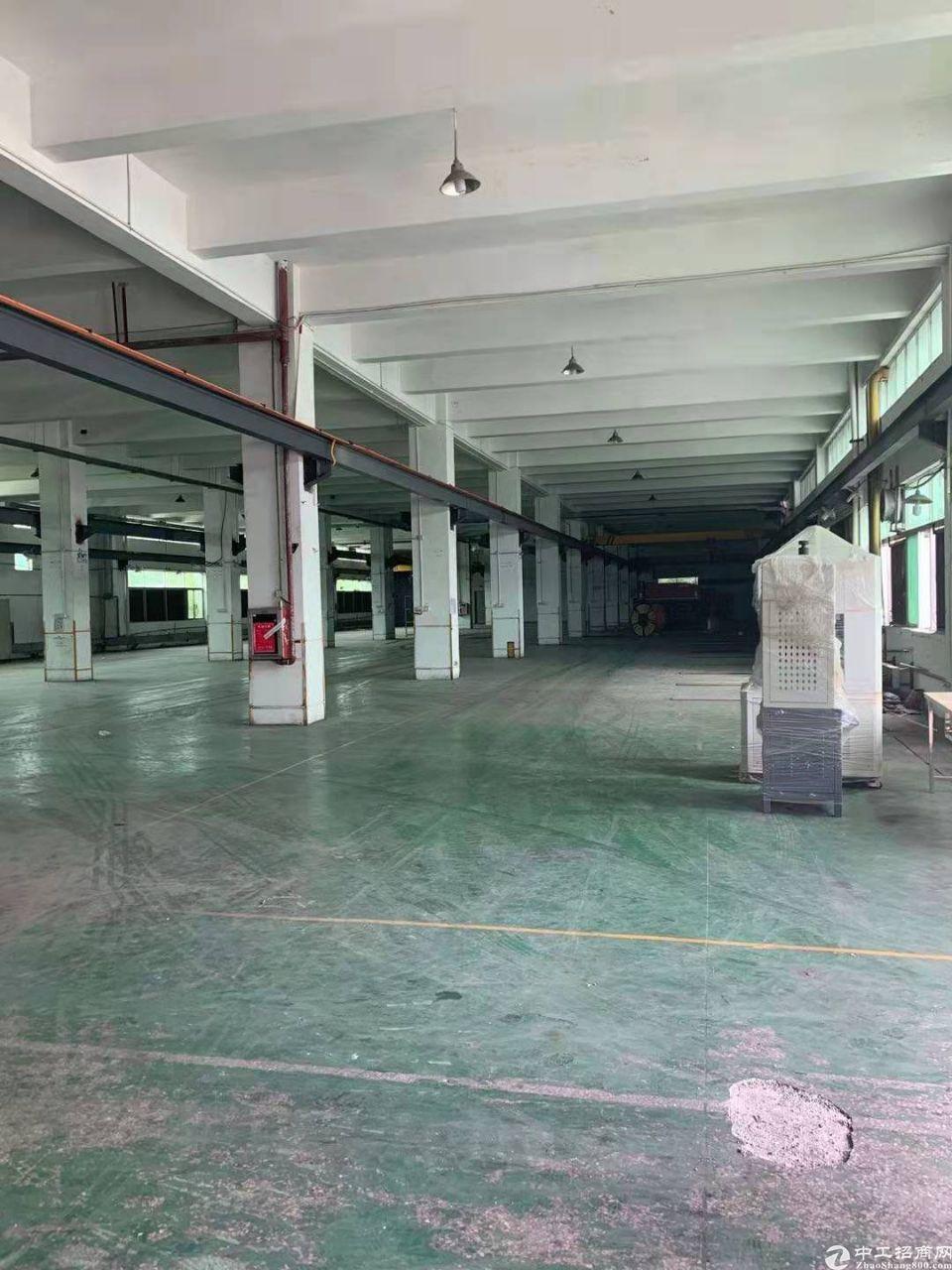 大鹏新区新出一楼6000平米仓库厂房出租