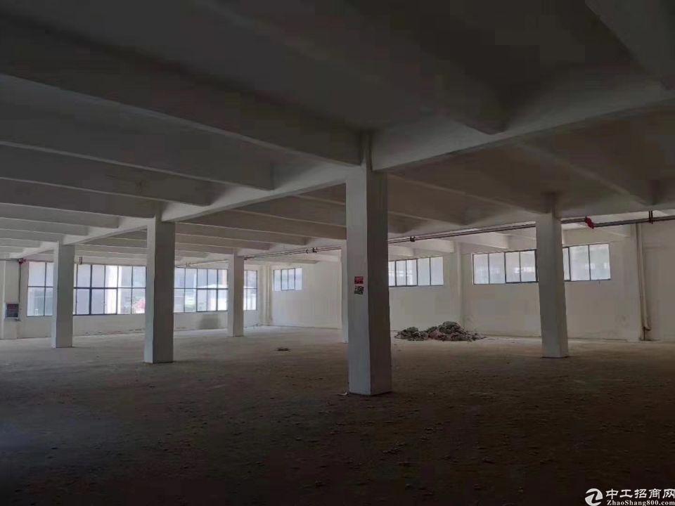 阳逻高新园区,全新一手厂房,可分割面积,独立产权