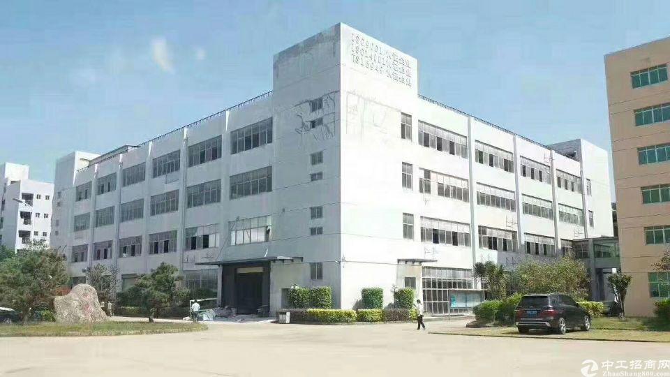 广东中山原房东两万平厂房招租可分租可包租