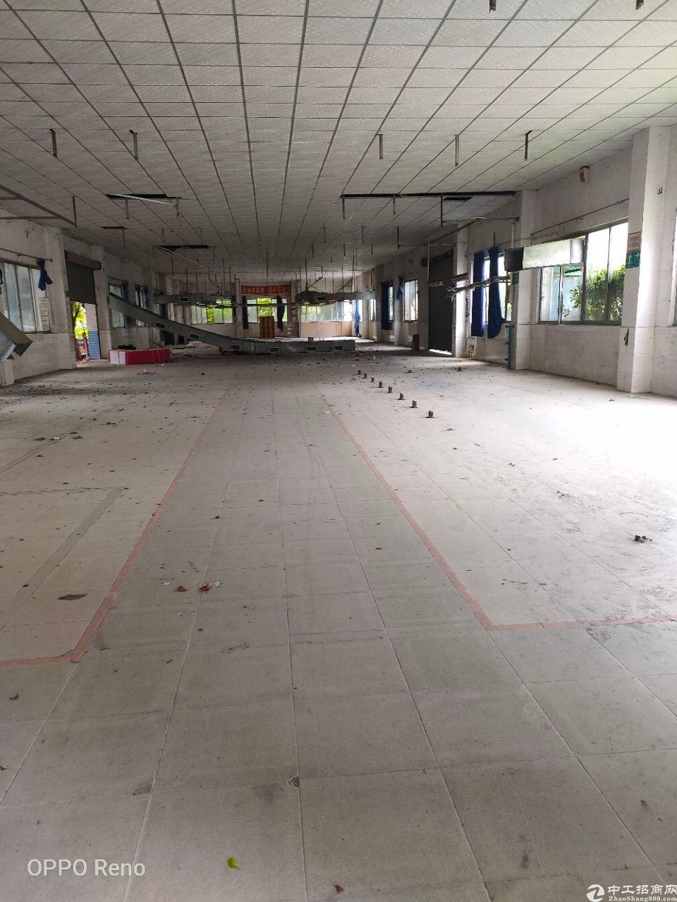 广州省白云区太和镇永兴一楼3000方标准厂房。