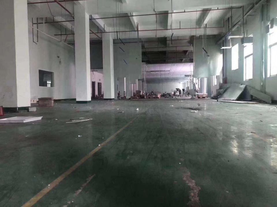 黄埔永和经济开发区新出一楼标准厂房1600平,可分租一半