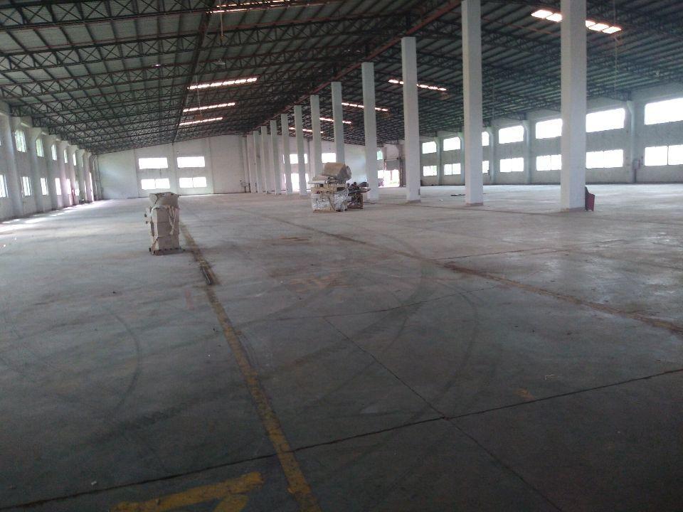 惠东白花花园式园区钢构厂房,适合各行业入住