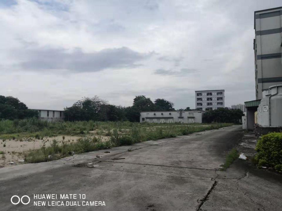 大岭山国有证厂房出售占地14000平米,建筑12000平米急
