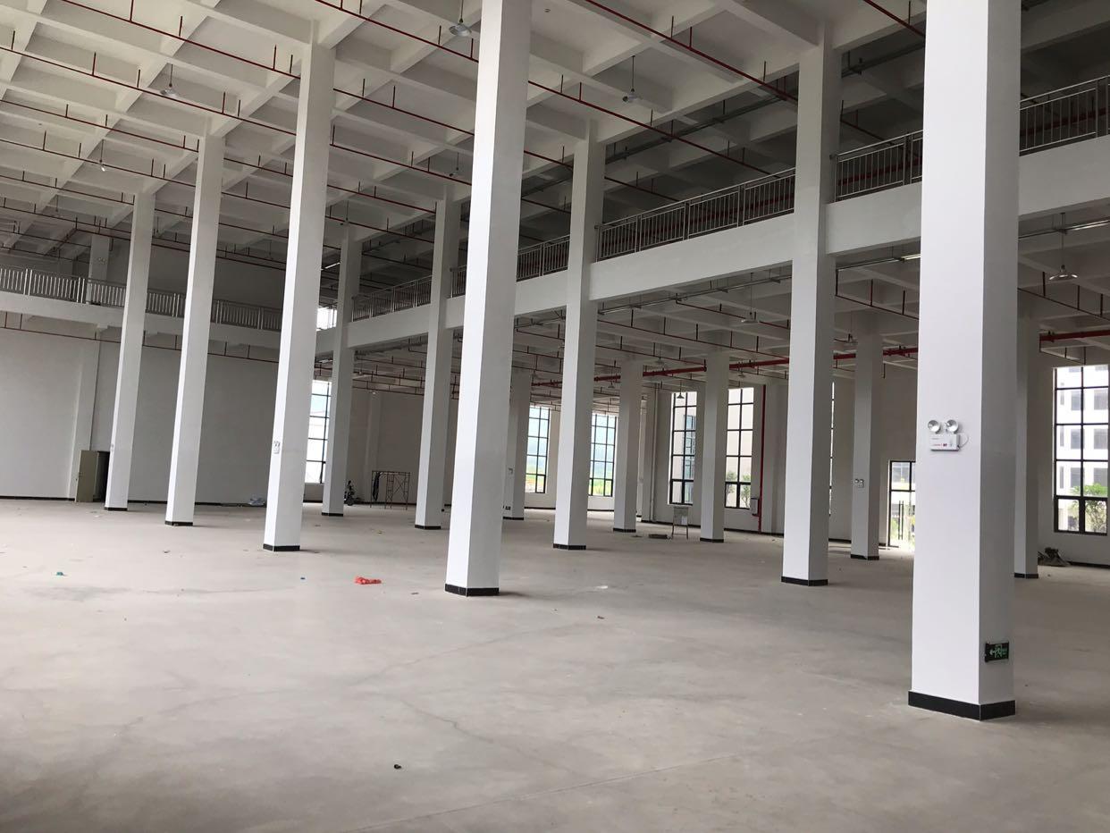 仲恺陈江全新独院标准万博app官方下载1-3层一楼10米高
