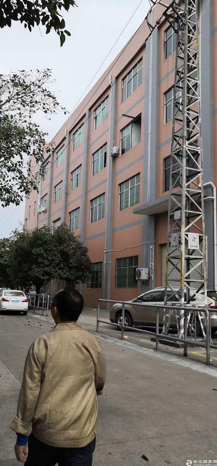 广州增城新塘9成新住宅楼580㎡出售