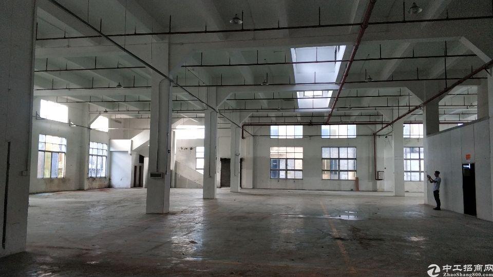 新塘镇太平洋工业区附近标准单一层厂房仓库出租证件齐全可办环评