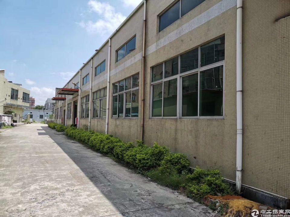 新盘问市,博罗经典砖墙到顶单层厂房!