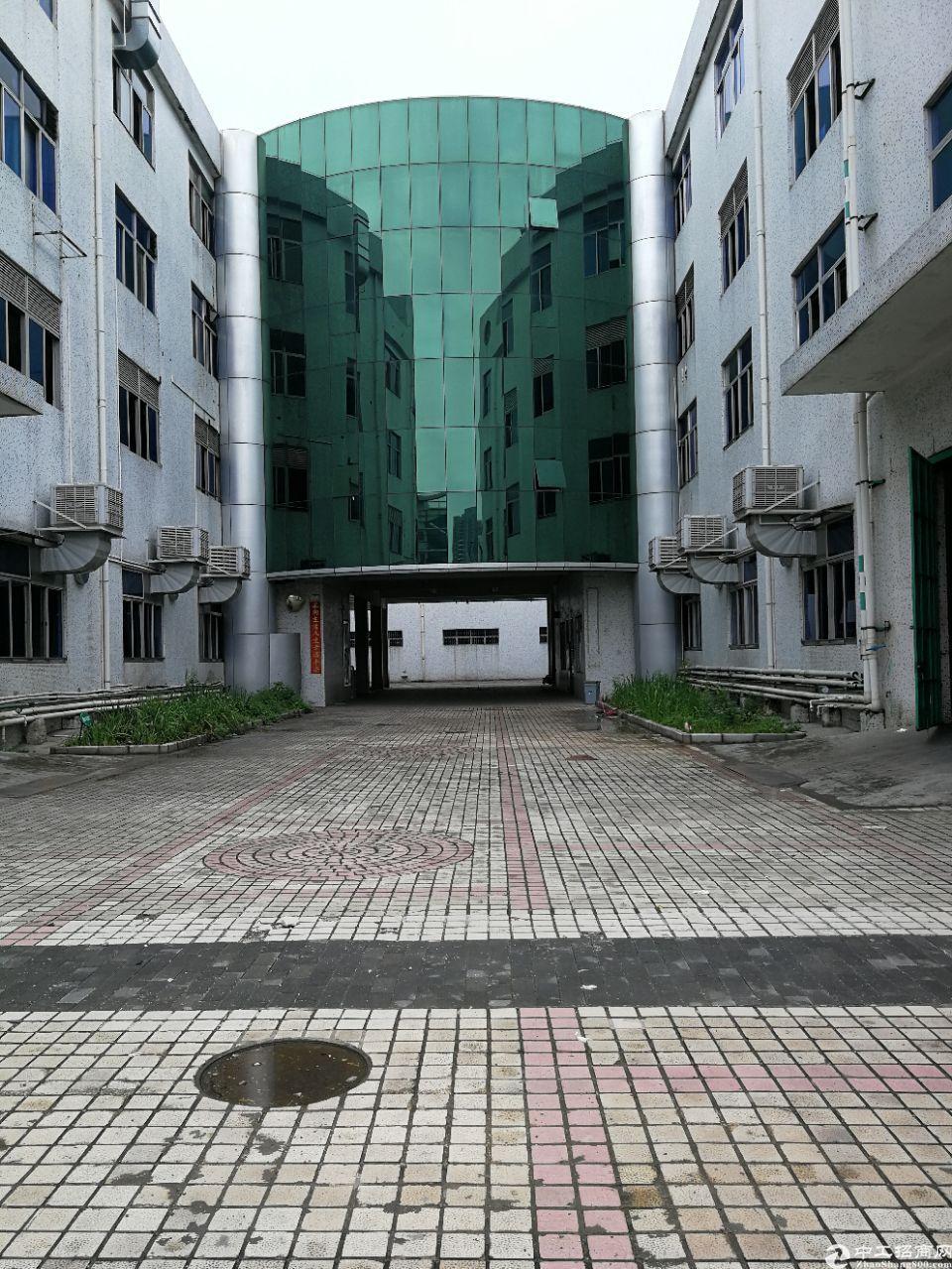 平湖山厦标准厂房1100平带办公室出租