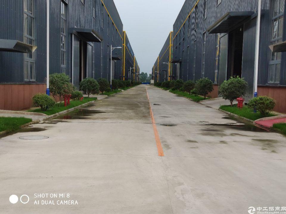 成雅工业园区厂房招商,层高12米