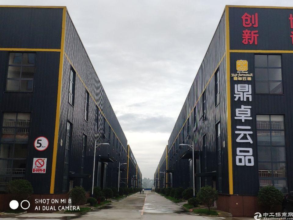 家具产业园区招商,单层钢构高12米