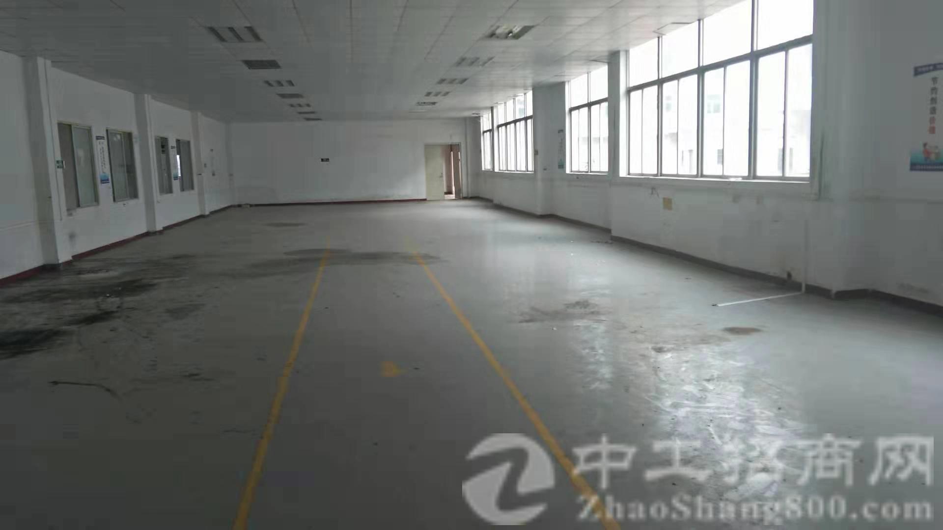 狮岭镇新杨原房东独院厂房仓库8000方分租任何行业大小可分租