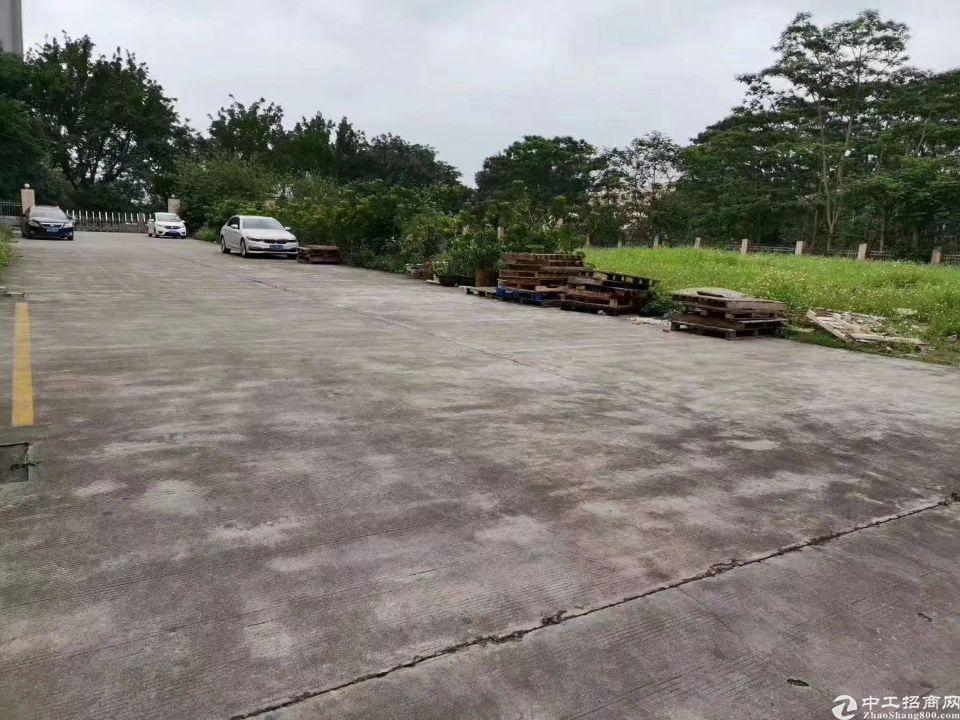 广州增城新塘镇稀缺土地210出售
