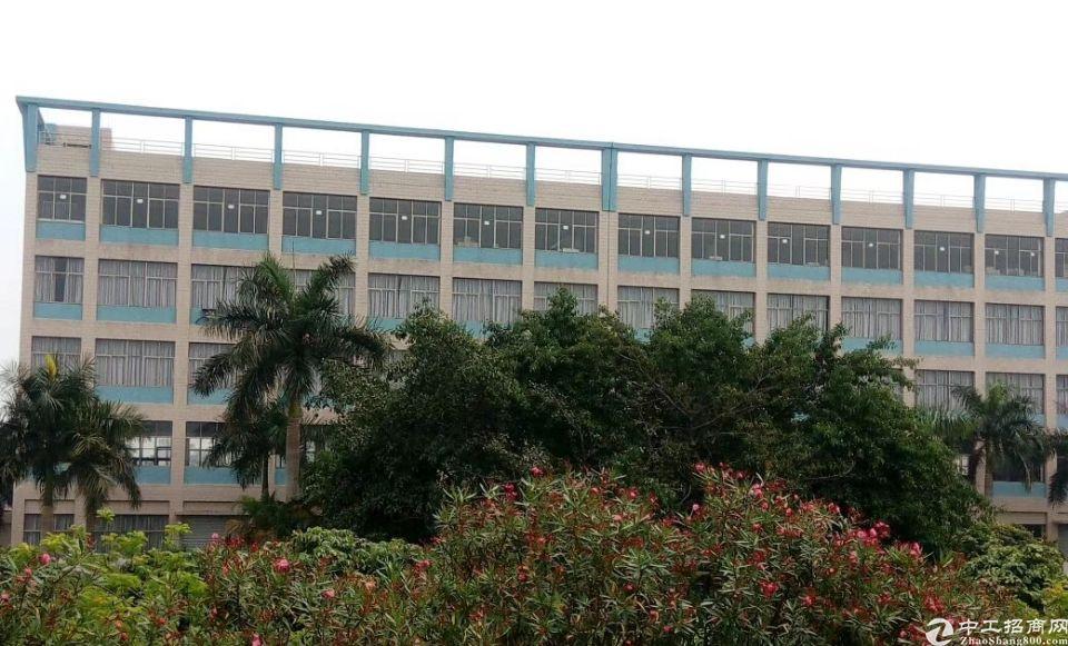 用标准厂房做仓库不也很好吗?5层约10000㎡,货梯2部。