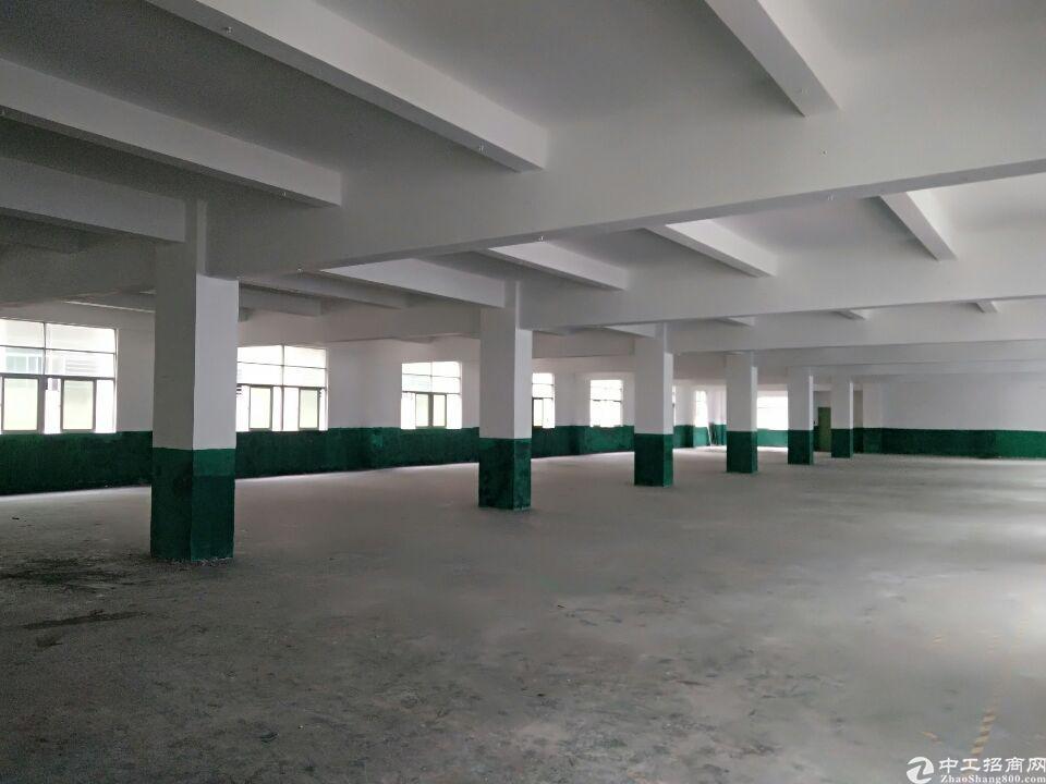 深圳市龙华区大浪有原房东厂房1200平出租大小面积可分租
