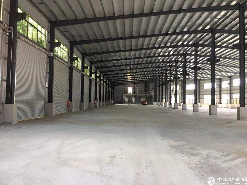 虎门镇原房东4000平方11米高独院钢构出租-图6