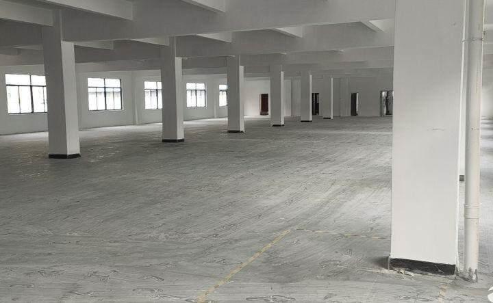 寮步镇新出可做写字楼7000平方厂房形象好图片2