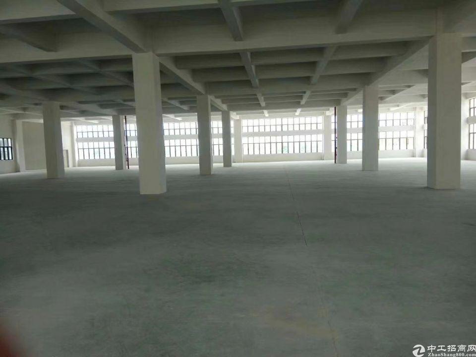 石碣镇标准二楼3000方,柱距10米,通风采光好
