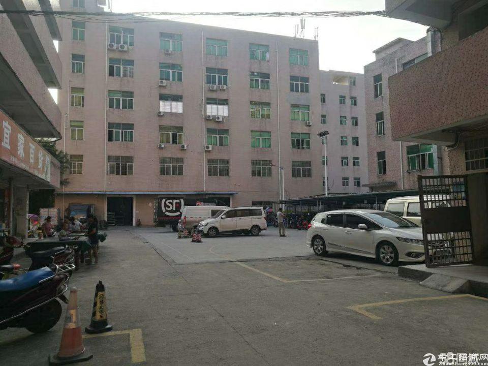 (出租)西乡鹤洲大型园区2200平带装修厂房出租不需转让费