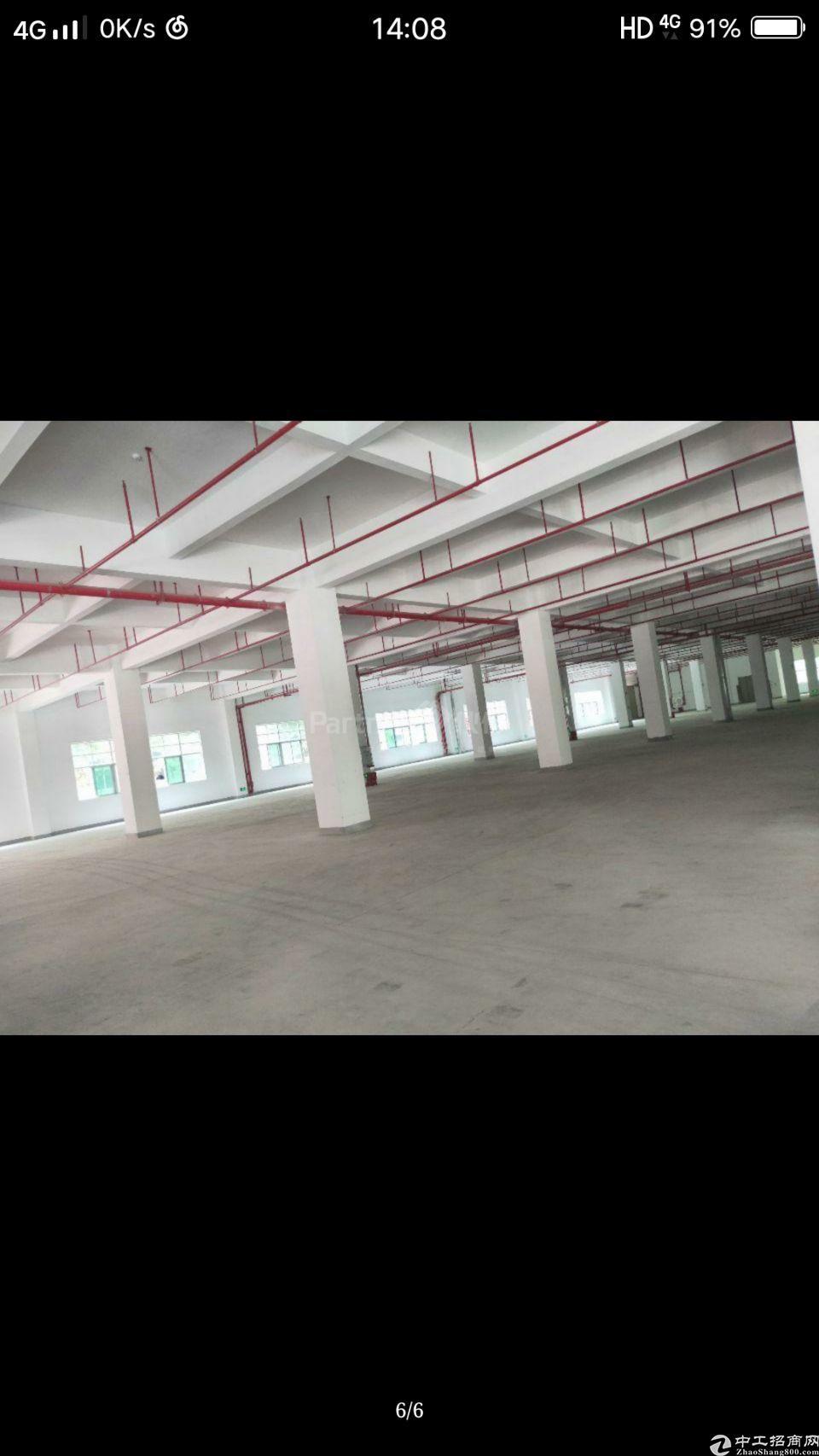 柏塘镇原房东标准工业园区厂房分租1000,证件齐全,只要十元
