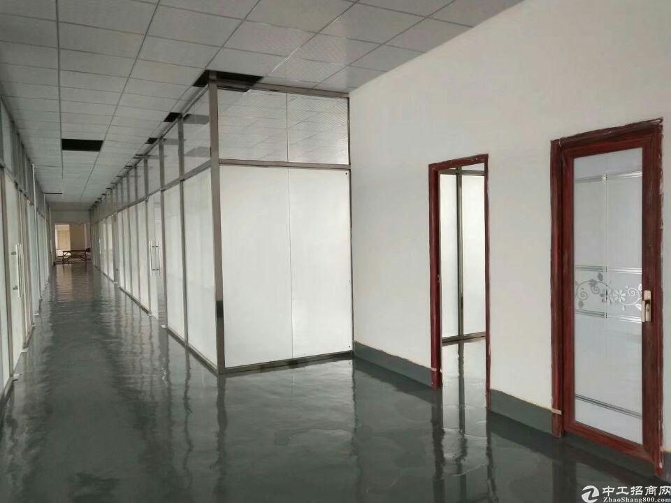 坪地高桥装修办公室出租500平电商办公仓库