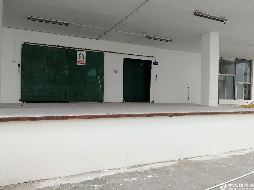 观澜桂花红本带卸货平台楼上厂房可做仓库办公贸易生产