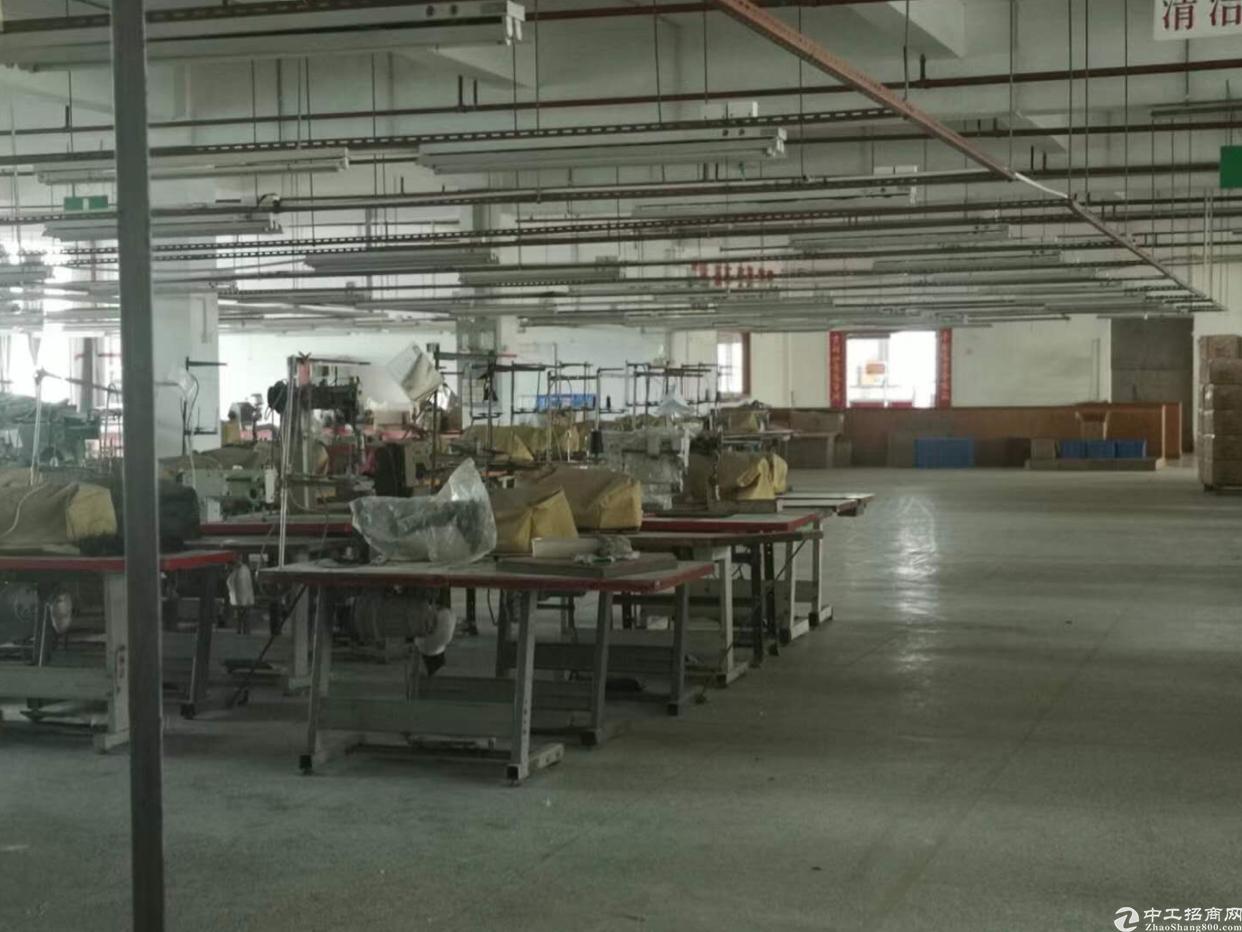 惠州市石湾镇原房东10000平方厂房招租