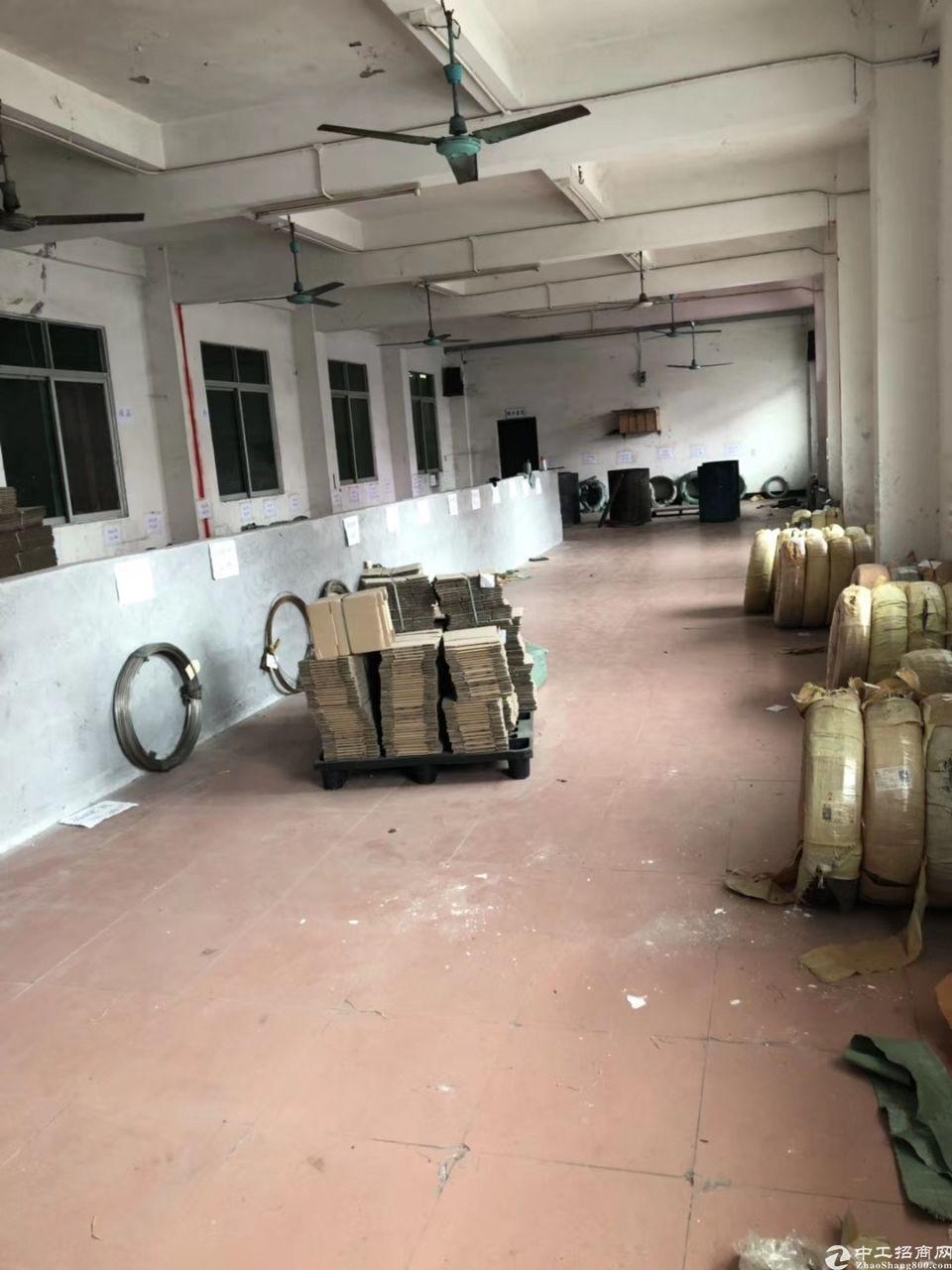 东莞市新出宿舍一楼可做仓库,小加工