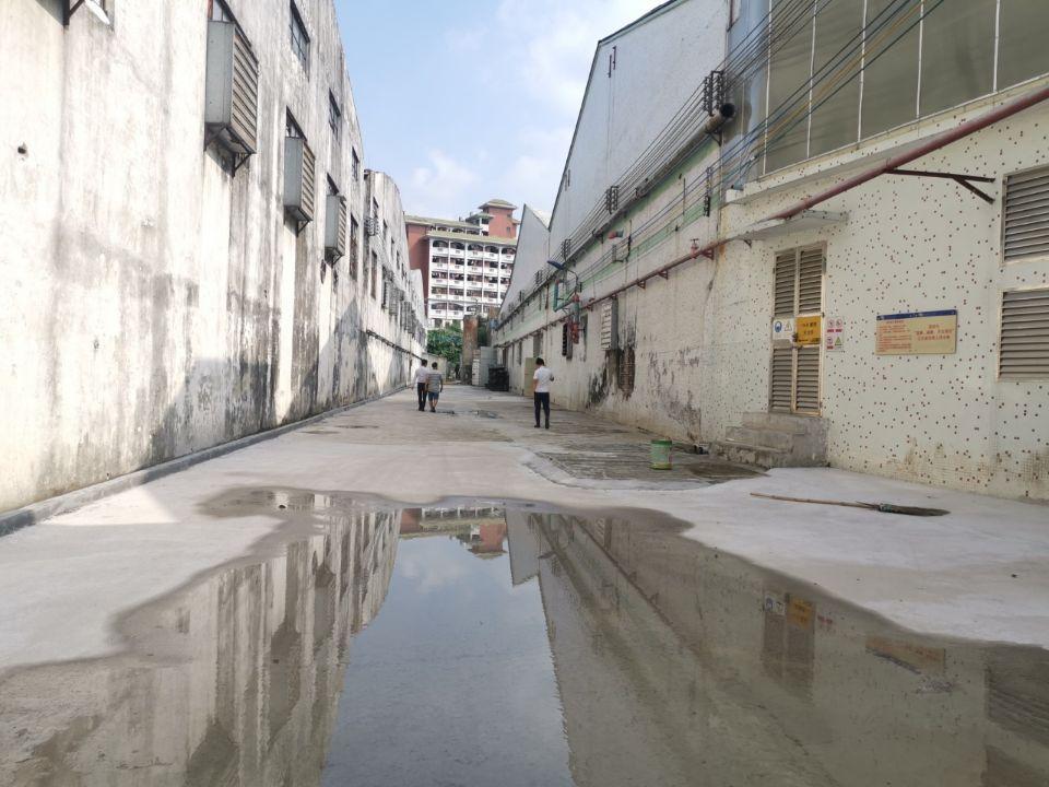 番禺沙湾独院单一层厂房招租4200方,工业用地,配电大。
