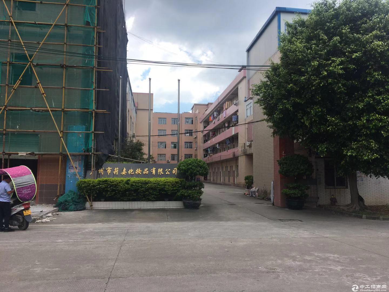 厚街镇赤岭村靠近南城原房东标准厂房仓库出租、证件齐全、形象好
