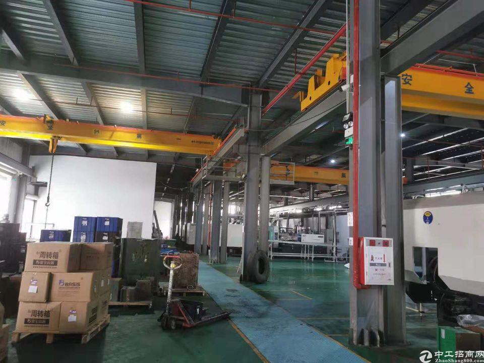 横沥镇新出原房东单一层厂房2000平方厂房大小可分,带行车-图4