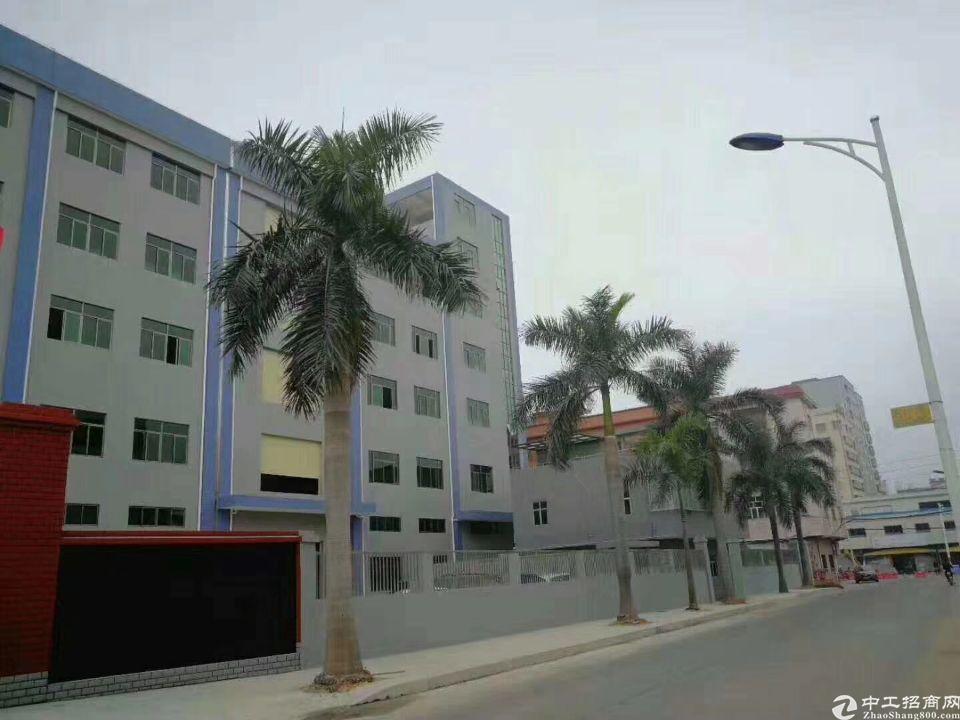 企石镇原房东独院标准厂房分租2000平方。