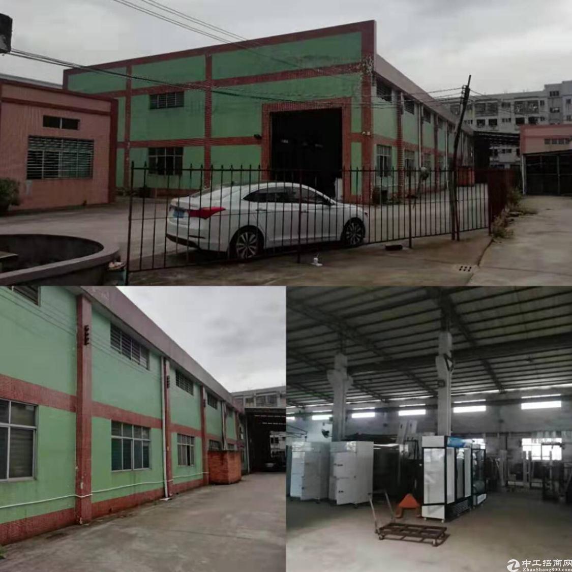 石排镇庙边王独院单一层厂房出租1450平方