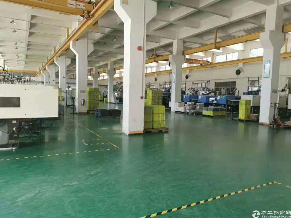 标准厂房一楼出租实际面积3500平米