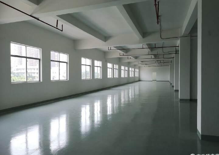 沙井后亭步涌精装修写字楼240平米图片1